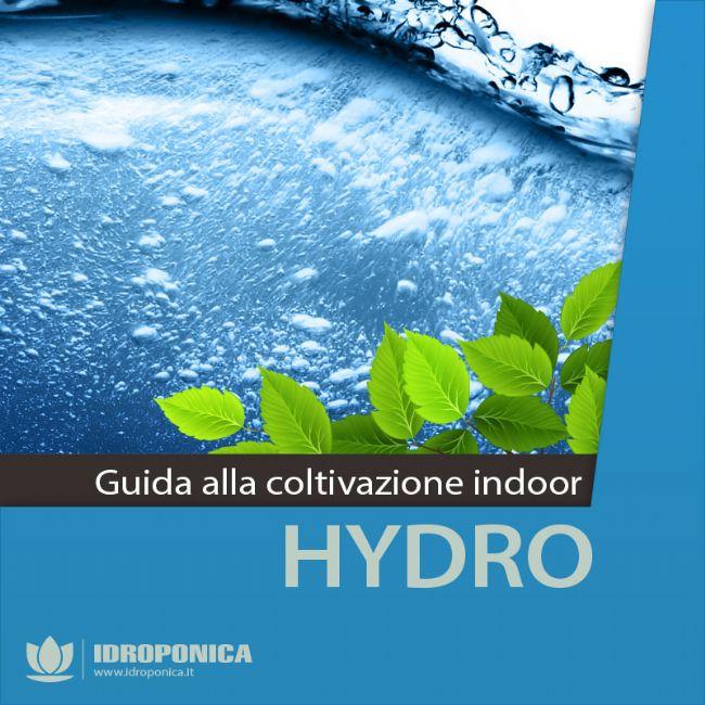 Coltivazione idroponica: tecniche