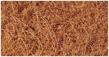 cocco fibra