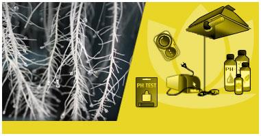 Kit Indoor per Coltivare in Aeroponica con i Milgiori Sistemi