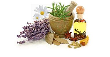 Fiori e Aromatiche
