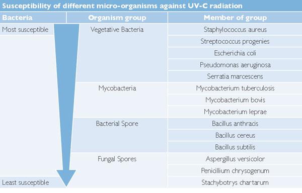CleanLight Air Purifier 65W - Micro Organismi e Funghi