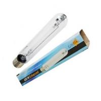 Lampada Gavita Enhanced HPS 600W - Fioritura