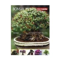 Bonsai di David Squire