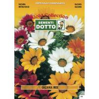 Semi di GAZANIA  in mix - h cm 35 (seme decorativo)