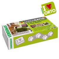 Kit Coltivazione erba gatta di Verdemax