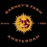 Barney's Farm LSD 5
