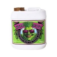 Advanced Nutrients - BIG BUD 10L