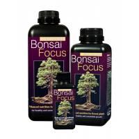 Bonsai Focus 300ml - Growth Technology