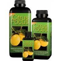 Citrus Focus - Growth Technology