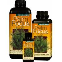 Palm Focus 300ml - Growth Technology