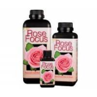 Rose Focus - Growth Technology