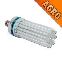 Lampada Compatta Fluorescente CFL 250W AGRO - Crescita e Fioritura