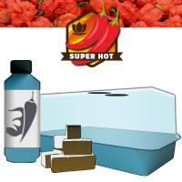 Kit Peperoncino (Miniserra+12Cubi+Chilli Focus)