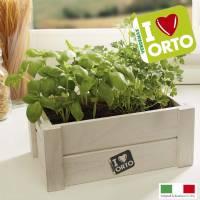 Kit Coltivazione Easyorto di Verdemax -  Basilico e Prezzemolo