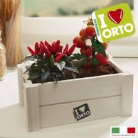 Kit Coltivazione Easyorto di Verdemax - Peperoncino e Pomodorino