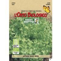 Semi biologici di Lattuga Salad Bowl