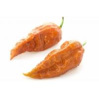Semi di peperoncino: Bhut Jolokia Rust