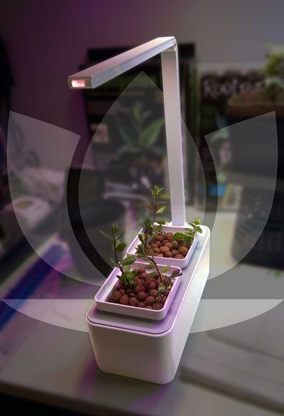 smart garden led l 39 orto per la tua cucina. Black Bedroom Furniture Sets. Home Design Ideas