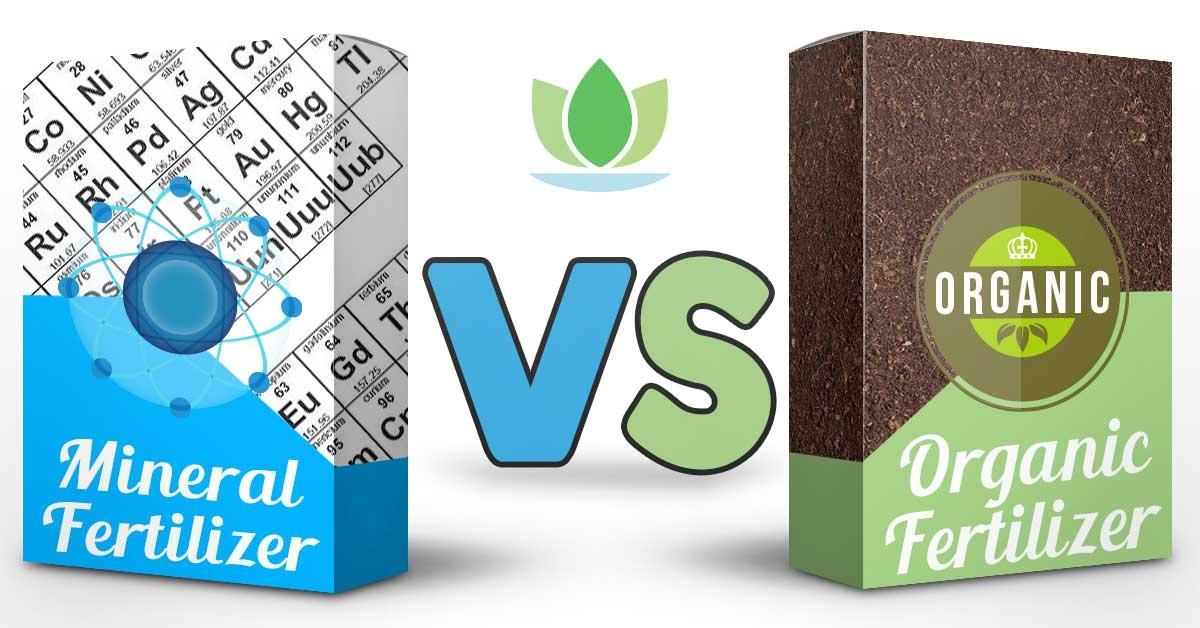 Fertilizzanti Organici e Concimi Minerali: Ecco le Differenze e i Tipi