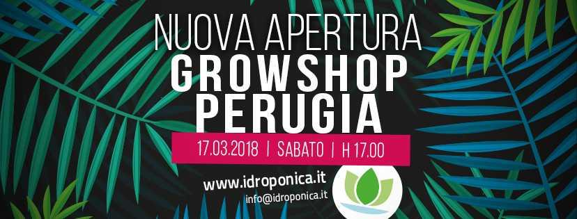Inaugurazione GrowShop Perugia