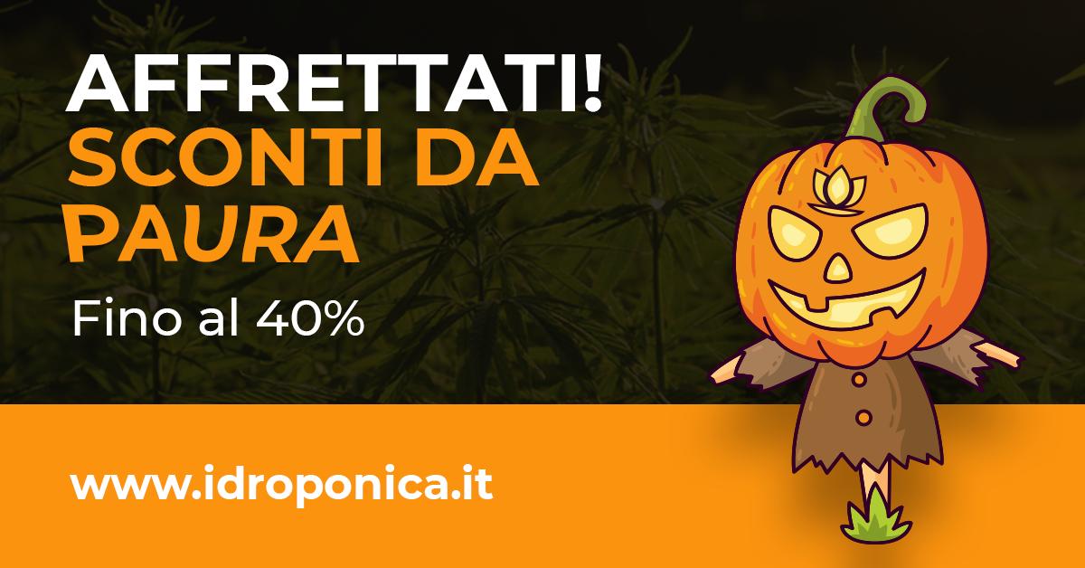 Halloween Offerte da Brivido di Idroponica.it