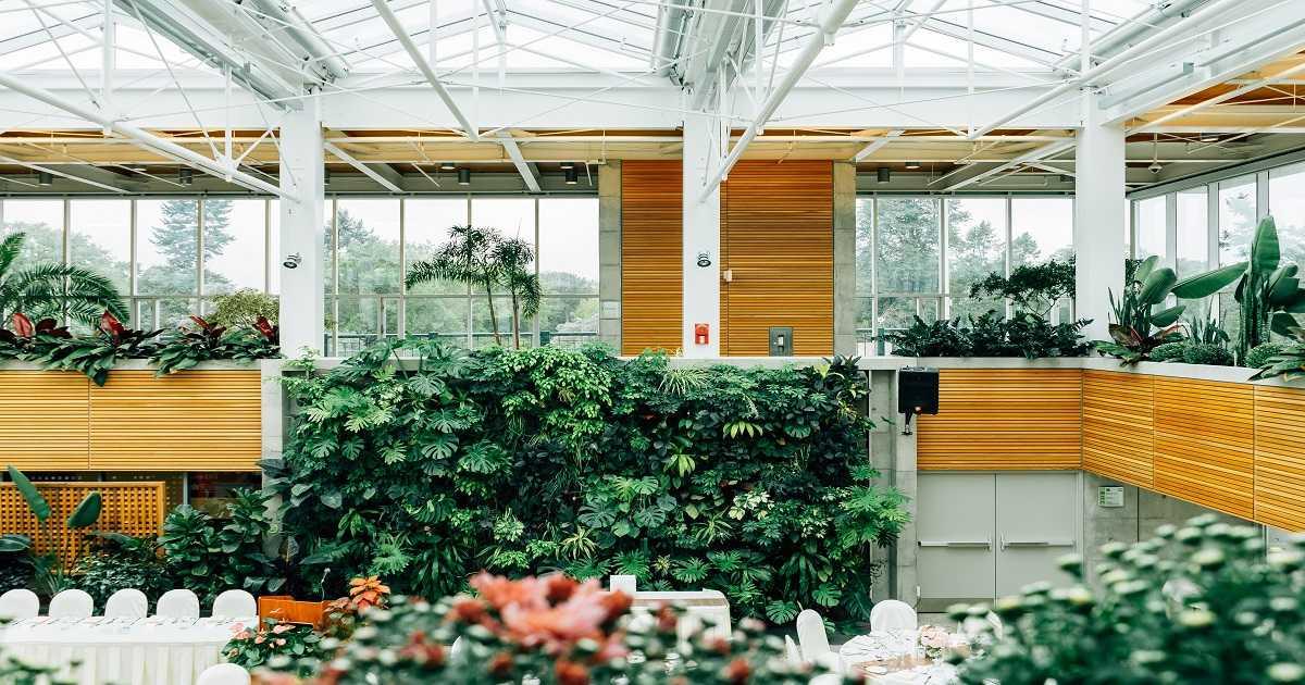 Bonus Green 2019 al 36%: detrazioni aree verdi e terrazzi