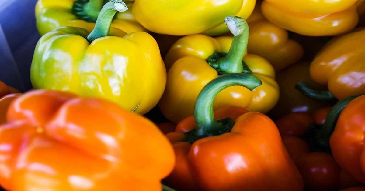 Come Coltivare i Peperoni all'Aperto e Indoor: Guida Completa