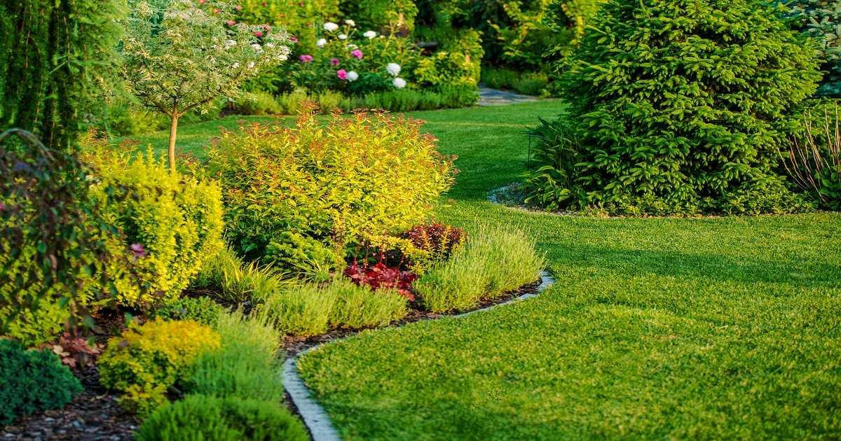 Come Progettare un Healing Garden e Quali Piante Inserire