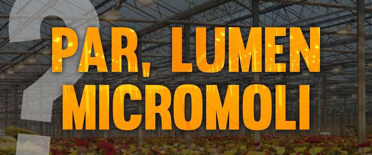 PAR, Lumen, Lux e Micromoli: Guida Sintetica