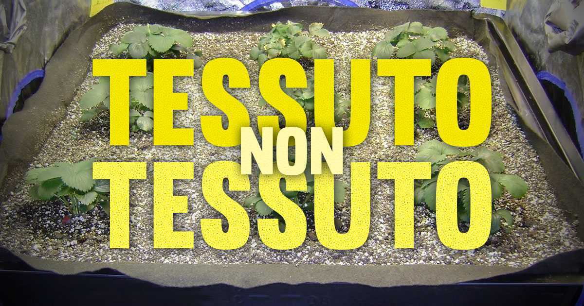 Vantaggi dei vasi in Tessuto non Tessuto Geotessile