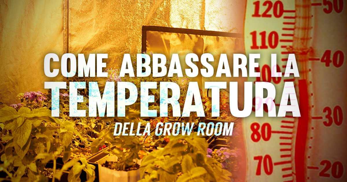 Come Abbassare la Temperatura della Grow Room