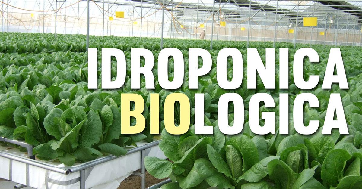 Bioponica - La coltivazione indoor idroponica biologica