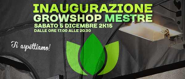 Grow Shop Mestre, il nostro nuovo punto vendita targato Idroponic