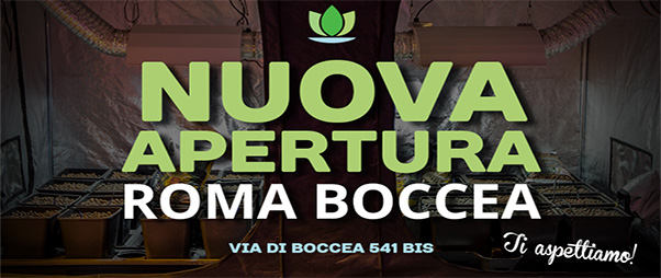 Grow Shop, Idroponica inaugura a Via di Boccea