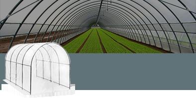 Serre a Tunnel per agricoltura