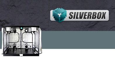 Silver Box: nuova Grow Box