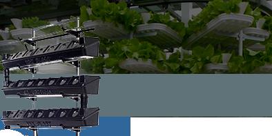 sistemi idroponici coltivazioni verticali