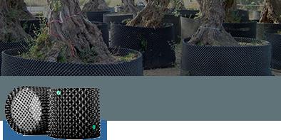 Superoots Air Pot Garden migliora la crescita delle radici