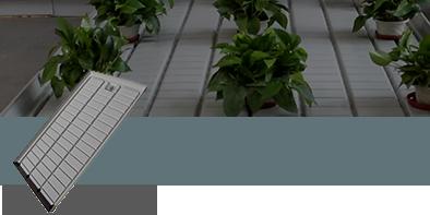 Vassoi e bancali per piante drenanti rigidi e flessibili per NFT, Ebb and Flood