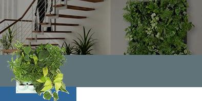 Botanica Urbana: Render di Pareti di Verde Verticale