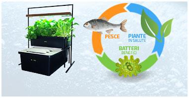 Sistemi Completi e Accessori per la Coltivazione Acquaponica