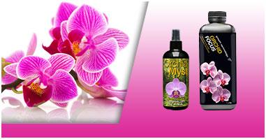 Fertilizzanti e nutrimenti per Orchidee
