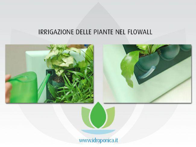 Rettangolo verde verticale flowall 40 x 42cm for Irrigazione piante