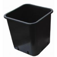 Vaso da 1,7L 12X12X13cm per germinazione
