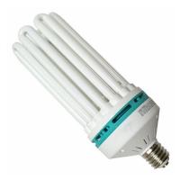 Lampada Compatta Fluorescente CFL 200W Rossa - 2700°K Fioritura