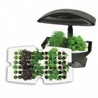 Garden Starter - Kit Vassoio germinazione 66 semi per Aerogarden
