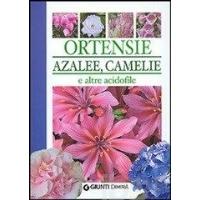 Ortensie, Azalee, Camelie e Altre Acidofile di Piero Lombardi