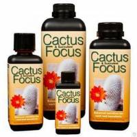 Cactus Focus - Growth Technology