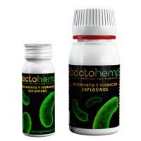 Agrobacterias - Bactohemp