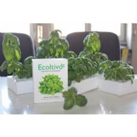 Ecoltivo - Mini sistema idroponico